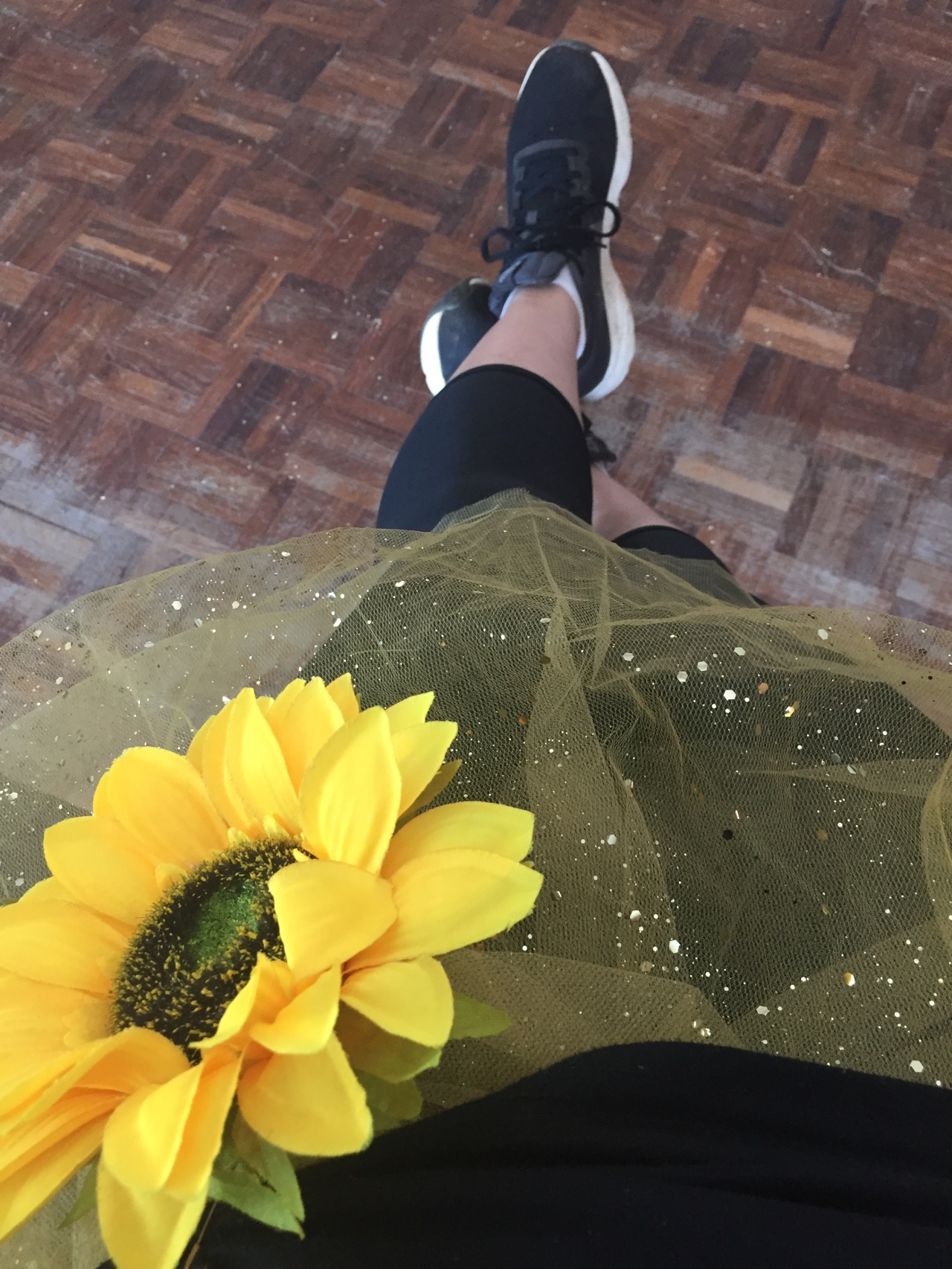 Zumbathon for the Sunflower Fund